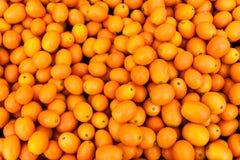 Japanische Orangen Lizenzfreies Stockbild