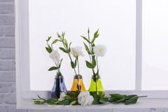 Japanische weiße Rosen stehen in den kleinen mehrfarbigen Vasen auf dem Fensterbrett stockfotos