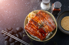 Japanischer Aal grillte mit Reis, oder Unagi ziehen an Lizenzfreies Stockfoto