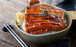 Japanischer Aal grillte mit Reis, oder Unagi ziehen an Lizenzfreie Stockfotografie