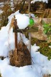 Japanischer Apfel in meinem sonnigen, schneebedeckten Biogarten, stockbilder