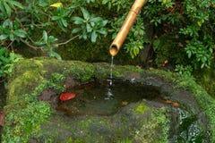 Japanischer Bambuswasserbrunnen lizenzfreie stockfotos