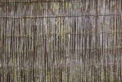 Japanischer Bambuszaun Stockfoto