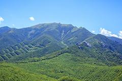 Japanischer Berg Stockfotografie