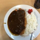 Japanischer Curry Stockfotografie