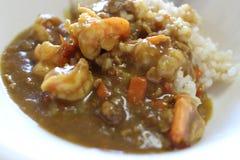 Japanischer Curryreis Lizenzfreie Stockbilder