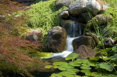Japanischer Garten Lizenzfreie Stockbilder