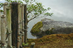 Japanischer Garten im Frühherbst Stockfotos