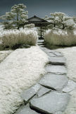 Japanischer Garten im Infrarot Stockfoto
