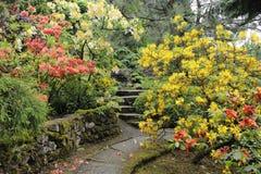 Japanischer Garten im Sommer mit Steinweg Lizenzfreies Stockbild