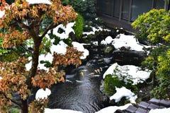 Japanischer Garten mit einem Teich und Karpfen Stockbilder