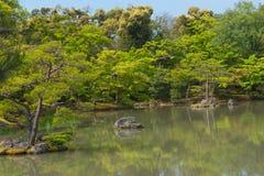 Japanischer Garten und ein See reisen in Japan Stockfoto