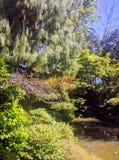 Japanischer Garten-Wasserfall Stockfotos