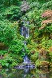 Japanischer Garten-Wasserfall Stockbild