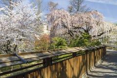 Japanischer Garten-Zaun Stockfotos