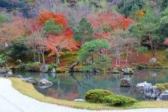 Japanischer Gartenherbst stockbilder