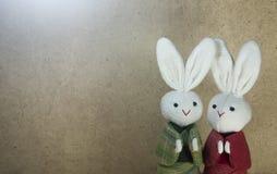 Japanischer hölzernerhintergrund der Paare Kaninchen- und Lizenzfreie Stockfotos