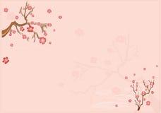 Japanischer Hintergrund mit Sacur lizenzfreie abbildung