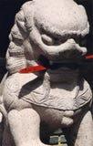 Japanischer Löwe Lizenzfreie Stockfotografie