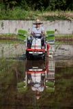 Japanischer Landwirt, der ein Reisfeld durch Traktor pflanzt Lizenzfreie Stockfotografie