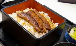 Japanischer Lebensmittelaal mit kabayaki Soße auf Reis Lizenzfreie Stockfotos