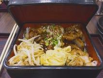 Japanischer Lebensmittelsatz, angebratenes Schweinefleisch mit Sojasoße, besprühter Esprit lizenzfreies stockfoto