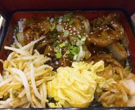 Japanischer Lebensmittelsatz, angebratenes Schweinefleisch mit Sojasoße, besprühter Esprit stockfotos