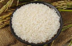 Japanischer Reis in der Schale Lizenzfreie Stockfotos