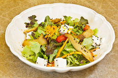 Japanischer Salat. Lizenzfreie Stockfotos
