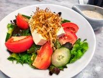 Japanischer Salat mit Tofu und Frischgemüse auf weißer Platte und indischem Sesam sauce Stockfotos