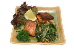 Japanischer Teller von Fischen Lizenzfreies Stockbild
