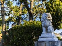 Japanischer Tempel-Hund Lizenzfreie Stockfotos