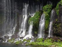 Japanischer Wasserfall Shiraito Lizenzfreie Stockfotos