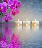 Japanischer ZEN-Garten mit Kerzenlichtern Stockfotos