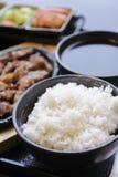 Japanisches Bento Mittagessen Kasten Schnellimbiß mit geräuchertem Aal und Gemüse Lizenzfreie Stockbilder