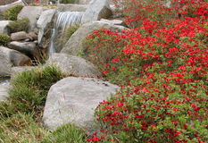 Japanisches Gartendetail stockfotos