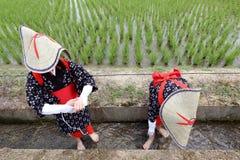 Japanisches junges Mädchen, das Reis pflanzt Stockfoto