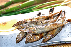 Japanisches Lebensmittelmaterial Lizenzfreie Stockfotografie