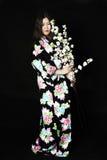 Japanisches Mädchen im traditionellen japanischen Kimono, Griffzweige von ch Lizenzfreie Stockbilder