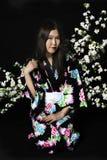 Japanisches Mädchen im traditionellen japanischen Kimono, Griffzweige von ch Lizenzfreie Stockfotografie