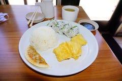 Japanisches Mittagessen Lizenzfreie Stockfotos