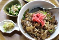 Japanisches Rindfleisch über Reis stockfotos