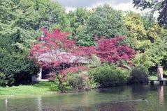 Japanisches Teehaus im englischen Garten in München, germanyjapanese Teehaus im englischen Garten in München, Deutschland Lizenzfreie Stockfotos
