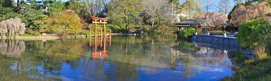 Japanisches Teich-Frühlings-Panorama Lizenzfreies Stockfoto