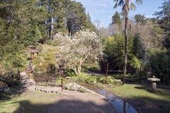 Japanise-Garten Lizenzfreies Stockfoto