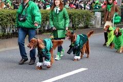 Japanner met hun Ierse zetters voor St Patrick dagvieringen stock afbeelding