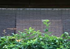 Japans bamboe houten gordijn voor venstersachtergrond stock foto's