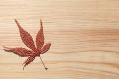 Japans esdoornblad en houten achtergrond Stock Foto's