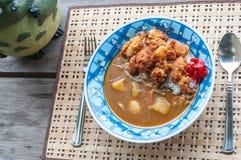 Japans Fried Chicken Curry Royaltyfri Bild