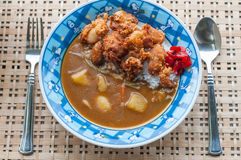 Japans Fried Chicken Curry Royaltyfria Foton